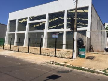 Alugar Comercial / Galpão - Barracão em Botucatu. apenas R$ 7.500,00