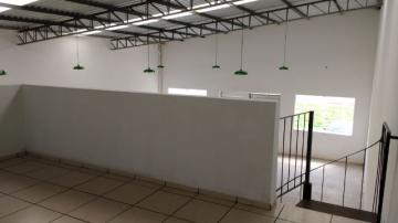 Alugar Comercial / Galpão - Barracão em Botucatu. apenas R$ 280.000,00