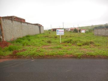 Alugar Terreno / Padrão em Botucatu. apenas R$ 85.000,00