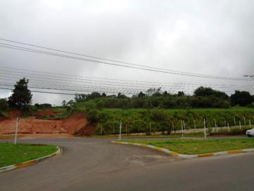 Botucatu Vila Paulista Terreno Venda R$5.936.100,00  Area do terreno 19787.00m2