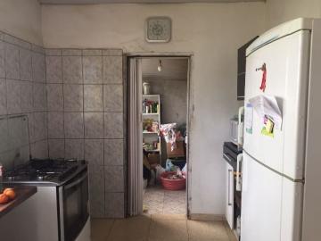 Comprar Rural / Sítio em Botucatu R$ 690.000,00 - Foto 2