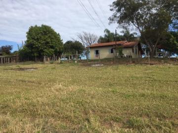 Comprar Rural / Sítio em Botucatu R$ 690.000,00 - Foto 6