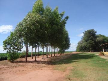 Comprar Rural / Chácara em Anhembi R$ 500.000,00 - Foto 3