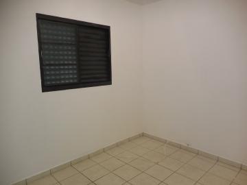 Alugar Apartamento / Padrão em Botucatu R$ 550,00 - Foto 6