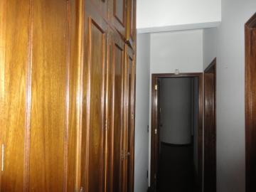 Alugar Apartamento / Padrão em Botucatu R$ 2.500,00 - Foto 11