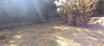 Comprar Terreno / Padrão em Botucatu R$ 500,00 - Foto 5