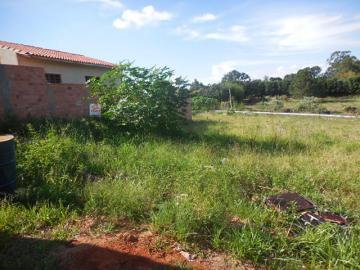 Alugar Terreno / Padrão em Botucatu. apenas R$ 68.000,00
