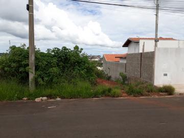 Alugar Terreno / Padrão em Botucatu. apenas R$ 70.000,00