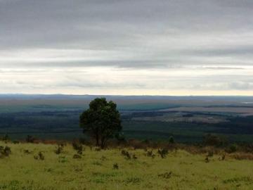 Rural / Sítio em Itatinga