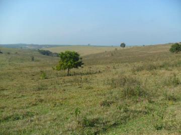Rural / Fazenda em Pardinho