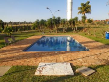 Alugar Apartamento / Padrão em Botucatu R$ 600,00 - Foto 2