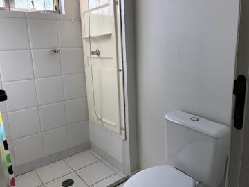 Alugar Apartamento / Padrão em Botucatu R$ 600,00 - Foto 7