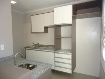 Alugar Apartamento / Kitchnet em Botucatu. apenas R$ 1.300,00