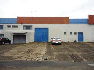Botucatu Vila dos Lavradores comercial Venda R$4.800.000,00  8 Vagas