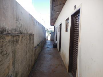 Apartamento / Kitchnet em Botucatu Alugar por R$400,00