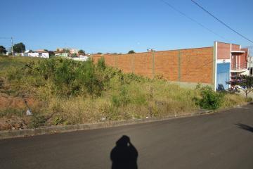Terreno / Padrão em Botucatu , Comprar por R$100.000,00