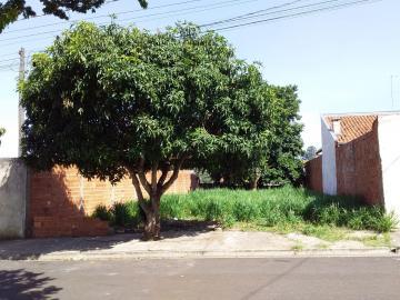 Terreno / Padrão em Botucatu , Comprar por R$64.000,00