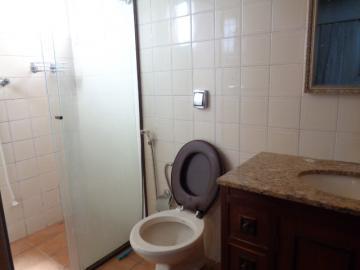 Alugar Apartamento / Padrão em Botucatu R$ 1.300,00 - Foto 17