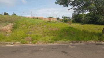 Terreno / Padrão em Botucatu , Comprar por R$62.000,00