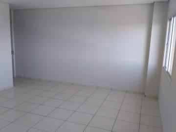 Comercial / Sala Edifício em Botucatu Alugar por R$900,00