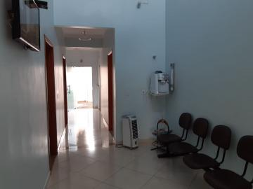Comercial / Sala em Botucatu Alugar por R$850,00