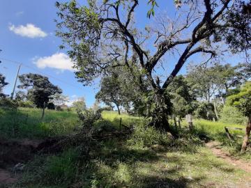 Comprar Rural / Chácara em Botucatu R$ 2.500.000,00 - Foto 10