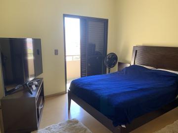 Alugar Apartamento / Padrão em Botucatu R$ 2.500,00 - Foto 15