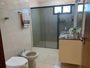 Alugar Apartamento / Padrão em Botucatu R$ 2.500,00 - Foto 18