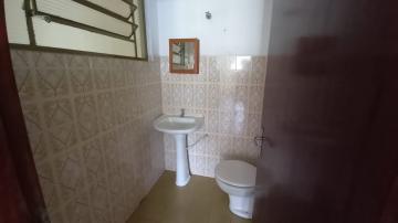 Alugar Comercial / Galpão - Barracão em Botucatu R$ 4.000,00 - Foto 8