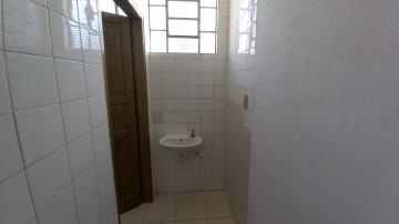 Alugar Comercial / Galpão - Barracão em Botucatu R$ 4.000,00 - Foto 9