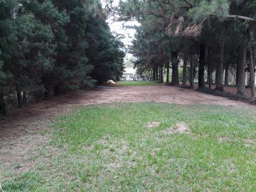 Comprar Rural / Chácara em Botucatu R$ 1.500.000,00 - Foto 3