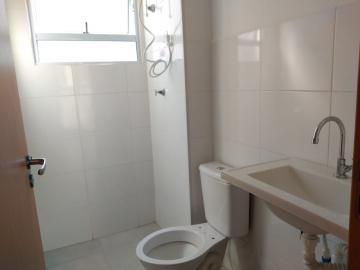 Alugar Apartamento / Padrão em Botucatu R$ 850,00 - Foto 8