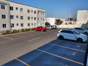 Alugar Apartamento / Padrão em Botucatu R$ 850,00 - Foto 9