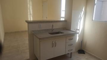 Alugar Apartamento / Padrão em Botucatu R$ 640,00 - Foto 4