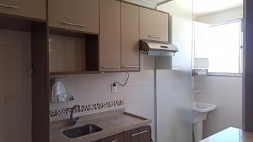 Alugar Apartamento / Padrão em Botucatu R$ 950,00 - Foto 4