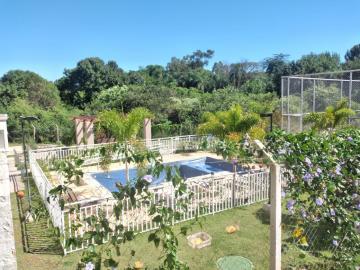 Alugar Apartamento / Padrão em Botucatu R$ 1.000,00 - Foto 10