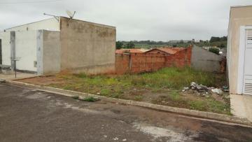 Comprar Terreno / Padrão em Botucatu R$ 70.000,00 - Foto 1
