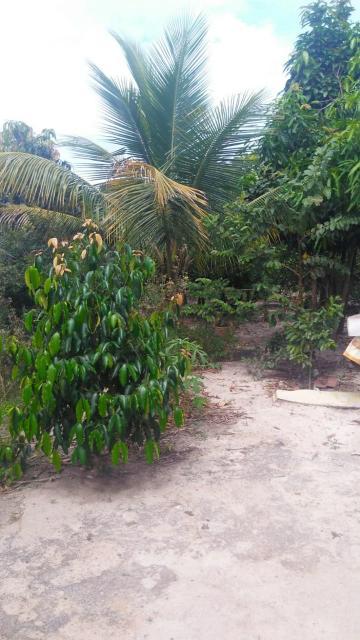 Comprar Rural / Chácara em Botucatu R$ 260.000,00 - Foto 9